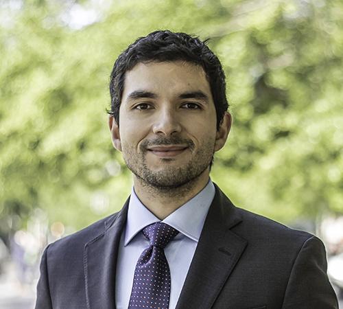 Diego Palma R.